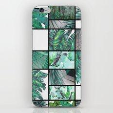 cool tropic  iPhone & iPod Skin