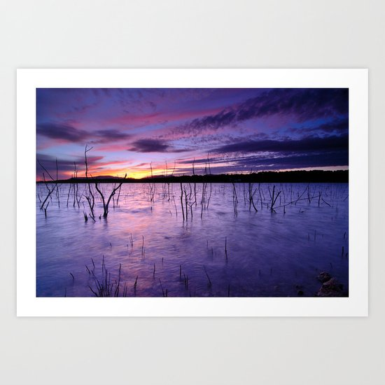 Purple waters Art Print