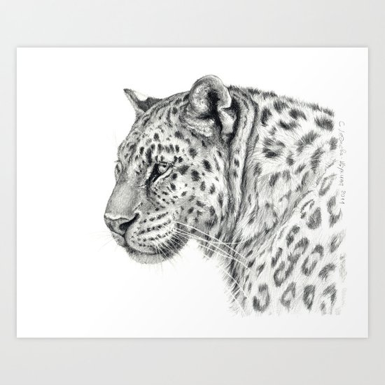 Panthera G013 Art Print