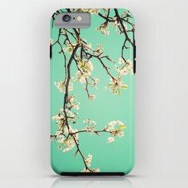 Beautiful inspiration! iPhone Case