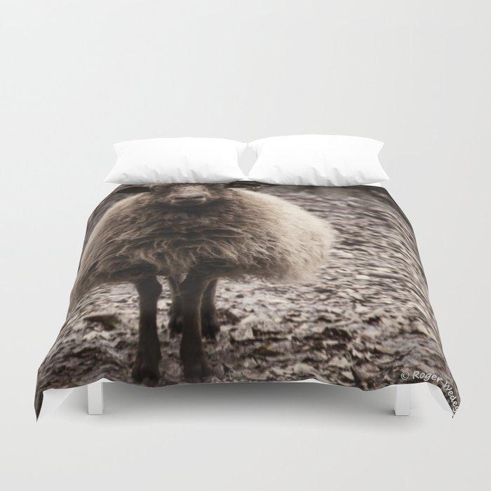 Sheep Stare Duvet Cover