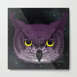 Knowledge of the Owl Metal Print
