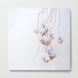 Snowy Hydrangea On A Snow Background #decor #society6 Metal Print