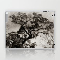 Wise Old Tree 2 Laptop & iPad Skin