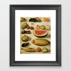 Still Life with Fruit (with Scorpion and Frog) Framed Art Print