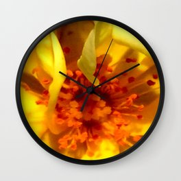 Pollen Macro Photography By Saribelle Rodriguez Wall Clock