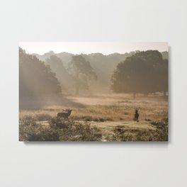 Richmond Park, study 3 Metal Print