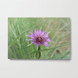Alviso Flower Metal Print
