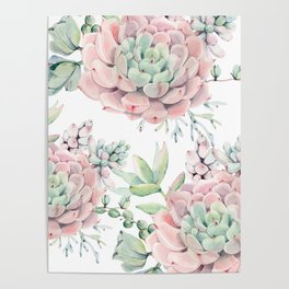 Pink Succulents by Nature Magick Poster