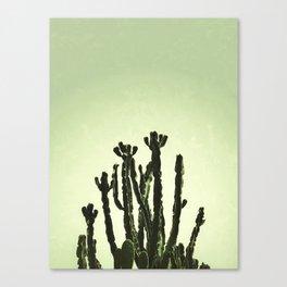 Wild Cactus Green Canvas Print