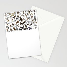 Birds of Prey of the United States Stationery Cards