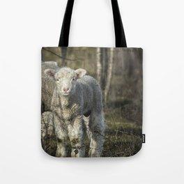 Winter Lamb Tote Bag