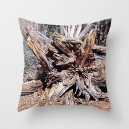 nature views -Tree Throw Pillow