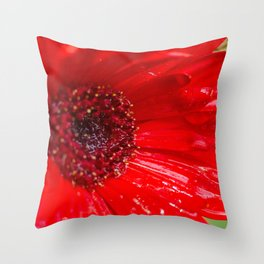 Red Gerber Daisy Throw Pillow