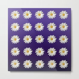 Daisies (blue-purple background) Metal Print