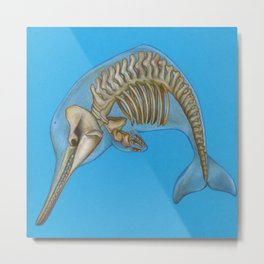 Baiji Dolphin Metal Print