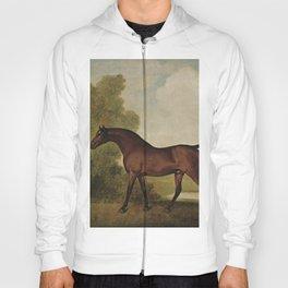Vintage painting of a horse by George Stubbs Hoody