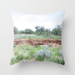 Clovis Site, No. 3 Throw Pillow