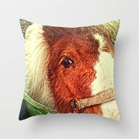 my little pony Throw Pillows featuring My Little Pony by Elizabeth Wilson Photography