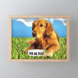 A Golden Retriever Framed Mini Art Print