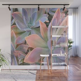 Pastel Succulents Wall Mural
