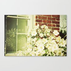 Beauty in an Ordinary Day Canvas Print