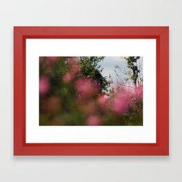 FOCUS IV Framed Art Print