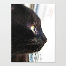 Sight Canvas Print