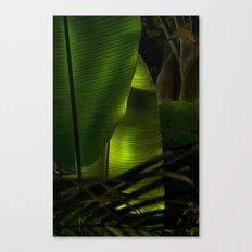 Tropical Canvas Print