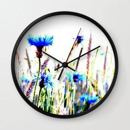 Centaurea flowers Wall Clock