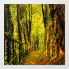 stone road Canvas Print
