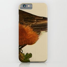 Vintage Print - Birds and Nature (1905) - Robin iPhone Case