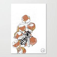 royal jelly Canvas Print