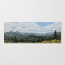 Round Bald, Roan Mountain Canvas Print