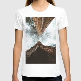 Stand in Awe of the Giant Forest T-shirt