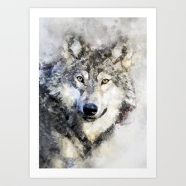 Watercolour wild grey wolf portrait Art Print