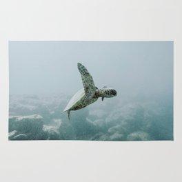 sea turtle iii / o'ahu, hawaii Rug