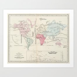 Vintage Agricultural Map of The World (1865) Art Print