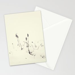Winter Cattails Stationery Cards
