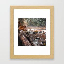 Peaceful Autumn Brook Framed Art Print