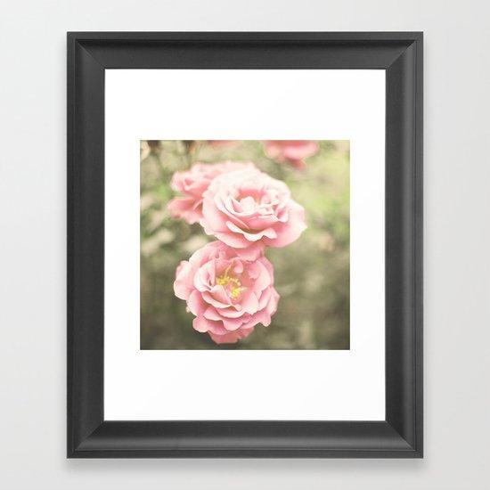 Haze Roses (Retro and Vintage Flower Photography) Framed Art Print