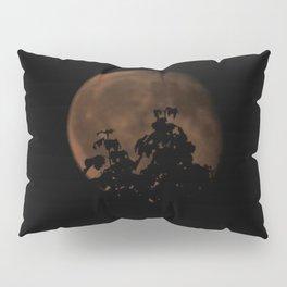 Moon Perspective Pillow Sham