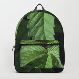 the healing of a nation Backpack
