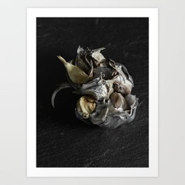 Silver Fruit 4 Art Print