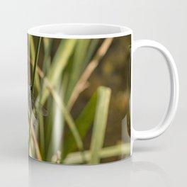 Dragonfly in the marsh Coffee Mug