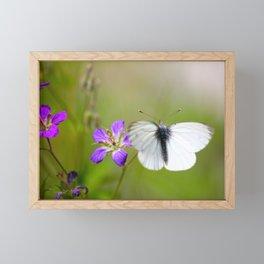 White Butterfly Natural Background Framed Mini Art Print