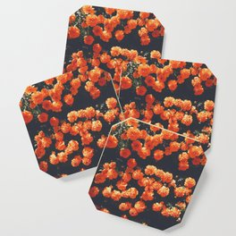 Orange Poppy Blooms Coaster