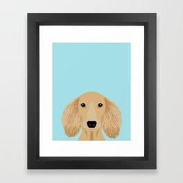 Long Haired Dachshund cream coat cute pet portraits custom dog breed art Framed Art Print