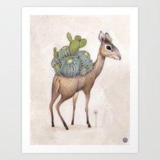 Dik dik  Art Print