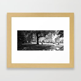 St Stephen's Green Park Framed Art Print